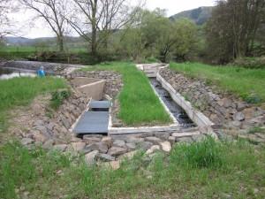 Fischtreppe am Dammhammer
